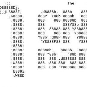 Включение протокола http/2 на VestaCP в Ubuntu