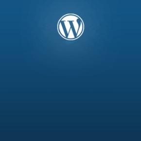 Смена логотипа Wordpress на входе и в админке