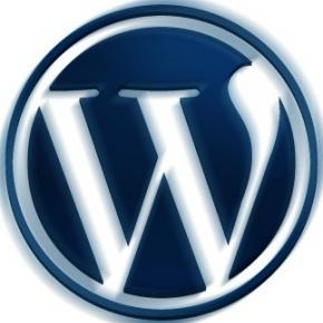 Снижаем тормознутость Wordpress 3.0 (правка wp-config)